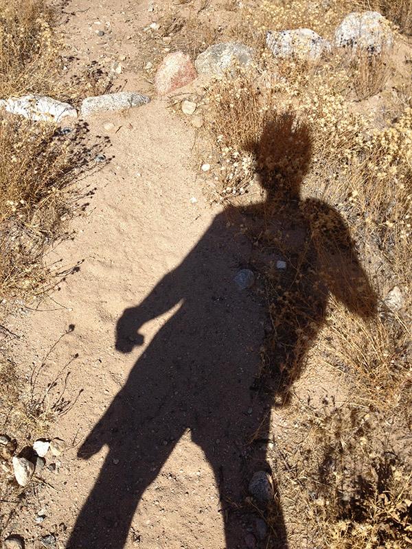 BuckShadow1