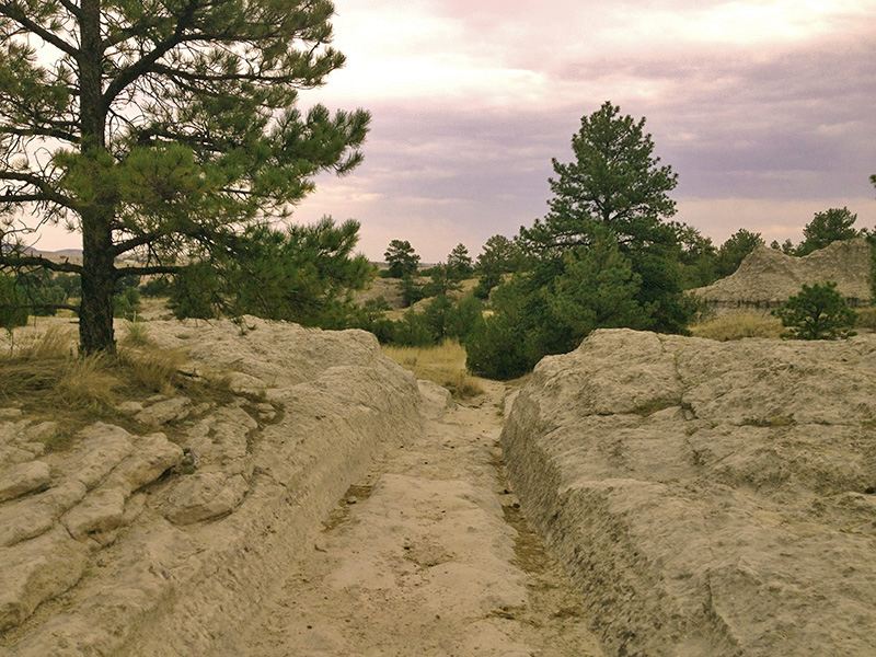 Ruts of the California National Historic Trail