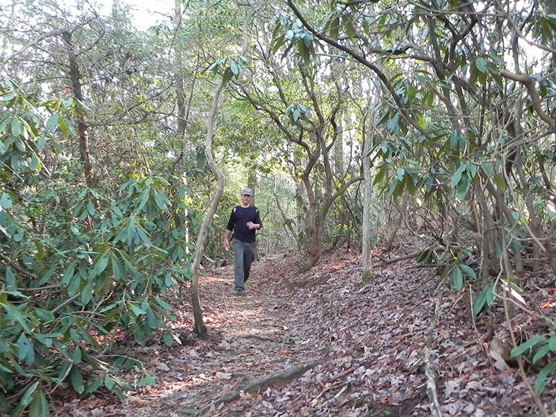 Walking along the Appalachian Trail near Springer Mountain in Georgia.